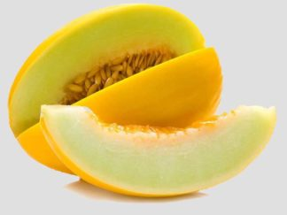 Graines de Melon Jaune d'Hiver x5